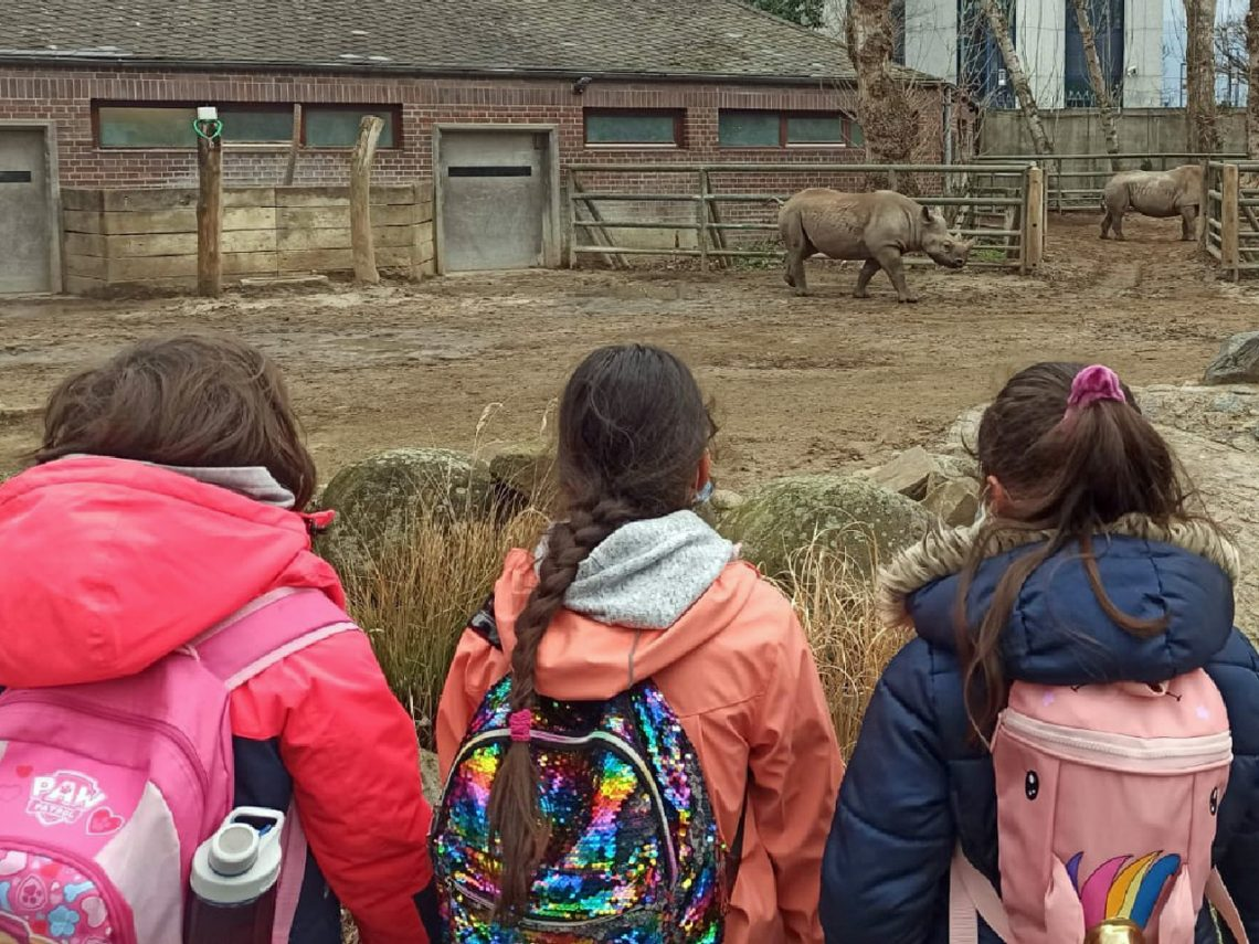 Die 123a im Zoo