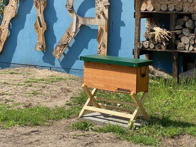 Bienenstock am Campus Hannah Höch
